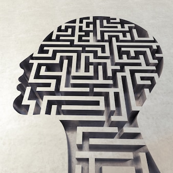 Labyrinth in the head, concept of confusion