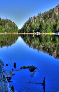 Lac spruce   hdr  canada