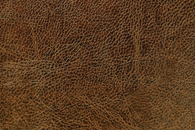 Lacquered brown leather texture background