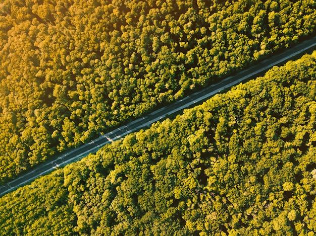 Красивое фото ladscape от трутня, взгляд сверху леса с асфальтированной дорогой во время захода солнца в летнем времени