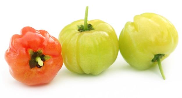 Lagerstroemia indica или lagestromia cherry фрукты