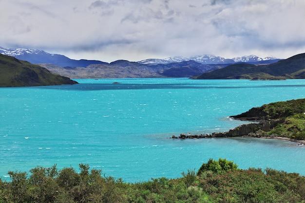 칠레 파타고니아 토레스 델 페인 국립 공원의라고 페호