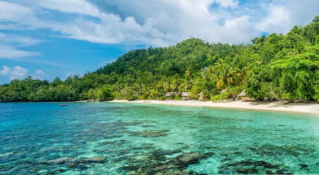 Lagoone 및 bamboo huts on the beach, coral reef of yananas homestay gam island, west papuan, raja ampat, indonesia.