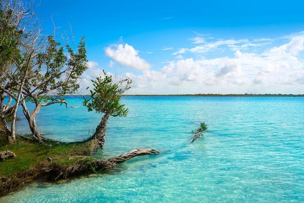 Laguna de bacalar lagoon in mexico