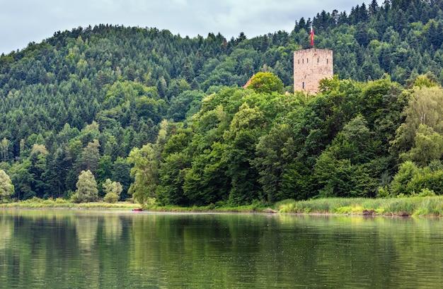 木の上の湖と塔。夏の曇りカントリービュー