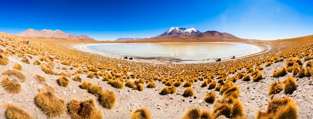 Lake, bolivia altiplano