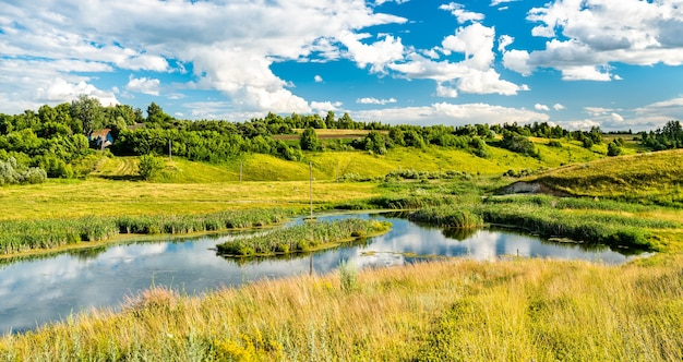 Lake in bolshoe gorodkovo - kursk region, russian federation