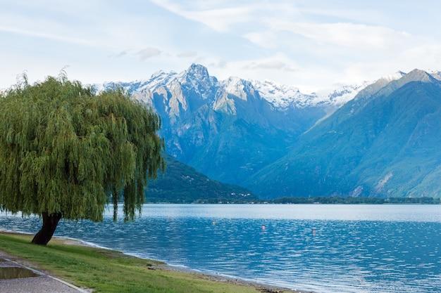 Озеро комо (италия) летний пасмурный вид с ивой на берегу и снегом на вершине горы.