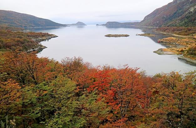 Lake fagnano also called lake cami in autumn, tierra del fuego national park, ushuaia, patagonia, argentina, south america