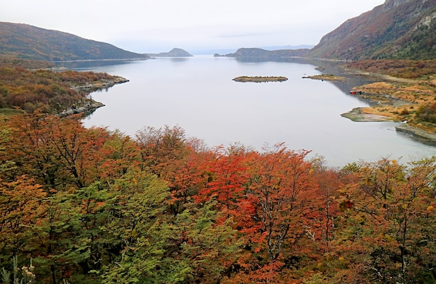 Lake fagnano는 가을에 lake cami라고도 불림, tierra del fuego 국립 공원, ushuaia, patagonia, 아르헨티나, 남미