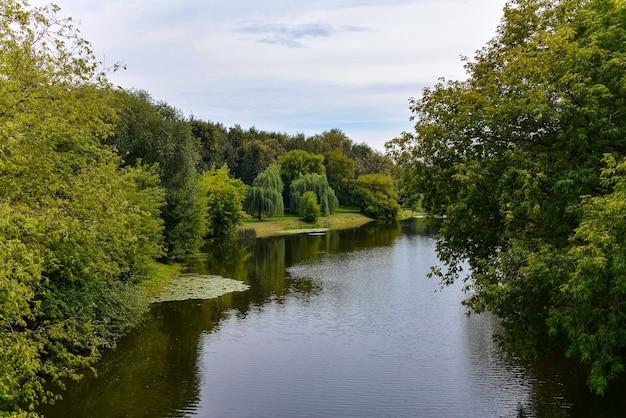 Озеро в зеленом городском парке