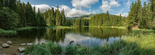 低いタトラ山脈の休暇で森の湖