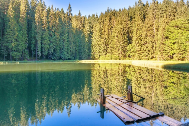 푸른 물과 나무 다리가 있는 숲 속의 호수