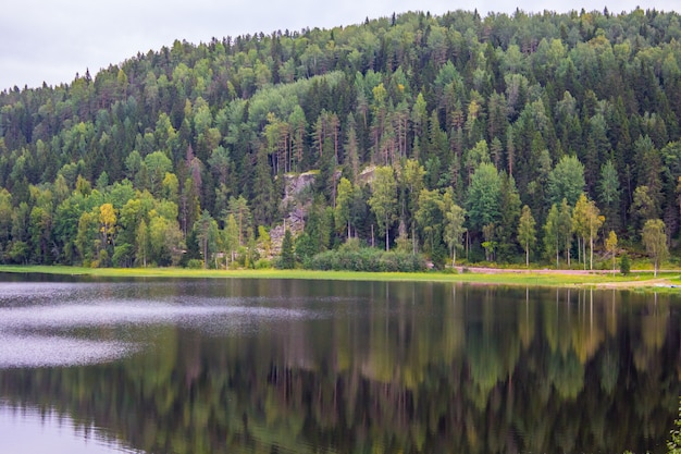 Lake in karelia. summer natural landscapes in travel. north of russia