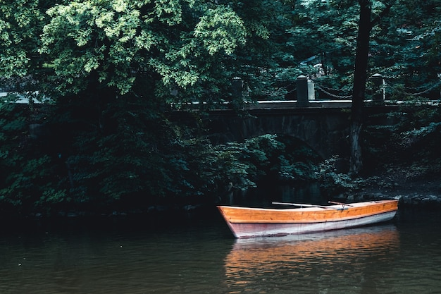 Lake landscape with boat