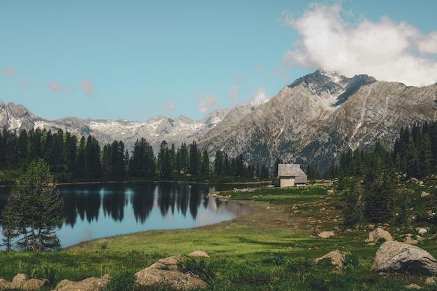 산에 걸쳐 나무 근처 호수