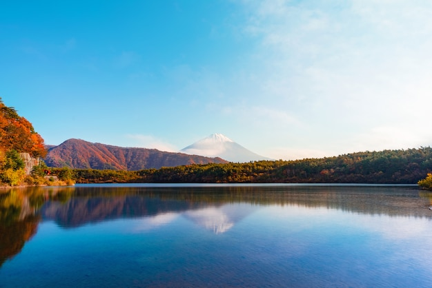 Lake saiko and  mountain fuji during autumn in japan
