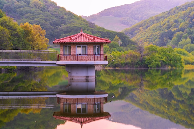 The lake of spring green at yongbi lake in seosan, south chungcheong province, korea