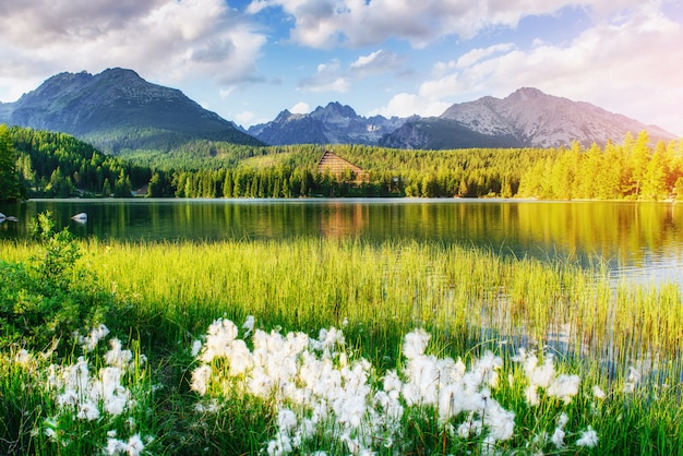 Lake strbske pleso in high tatras mountain, slovakia