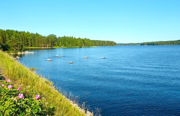 Летний вид на озеро с лесом на краю