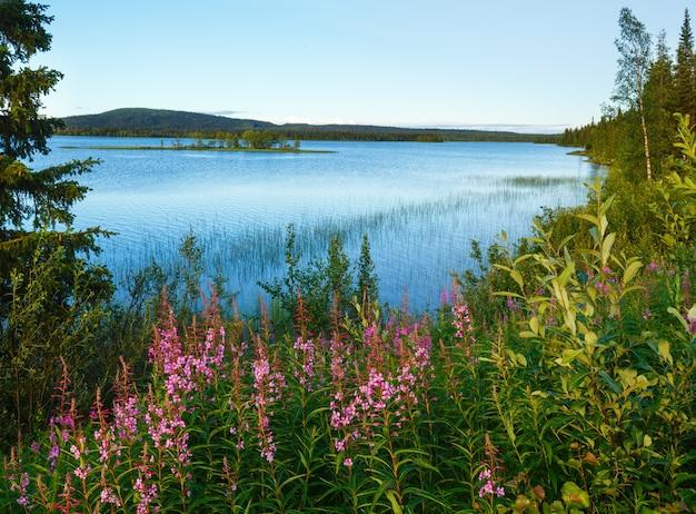 Летний вид на озеро с розовыми цветами спереди