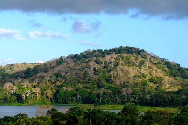 曇り空と日光の下で森に覆われた丘に囲まれた湖