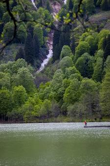 日光の下で森に覆われた丘に囲まれた湖