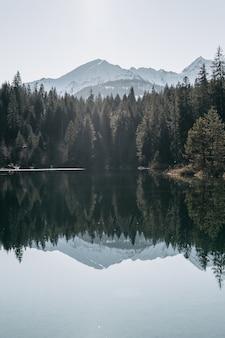산과 숲으로 둘러싸인 호수와 물에 반사되는 나무
