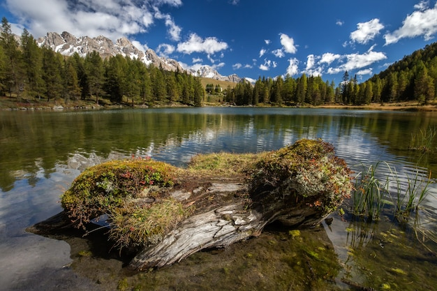 イタリアの日光の下で水に反射する木々と岩や森に囲まれた湖