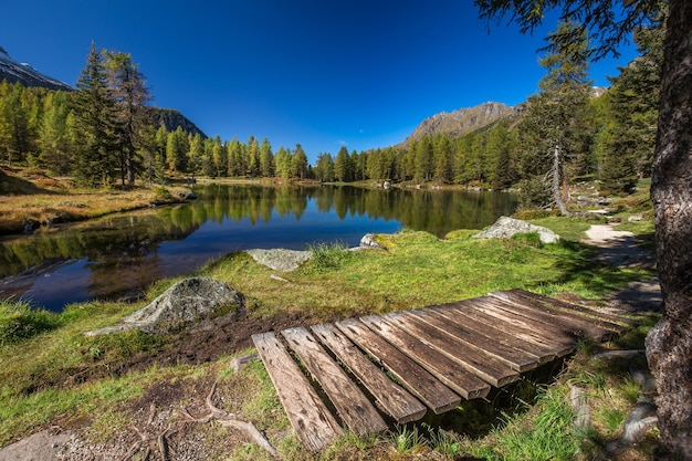 Lake surrounded by rocks and a forest with trees reflecting on the water under a blue sky in italy