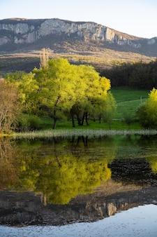 湖の木々と山々信じられないほど魅惑的な自然への風景の愛