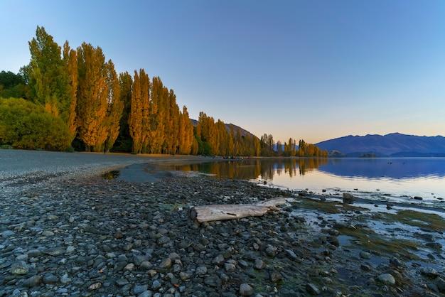 유명한 고독한 나무가있는 와나카 호수, 뉴질랜드 남섬 와나카, 가을 아침에 반사