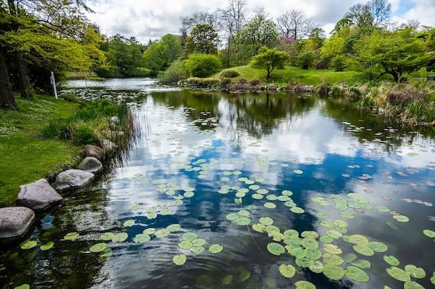 Озеро с отражением облаков в парке в окружении множества зеленых деревьев