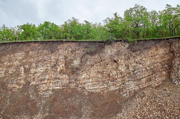 曇りの日にラミネート石。緑の茂みや木々が岩の上に生えています