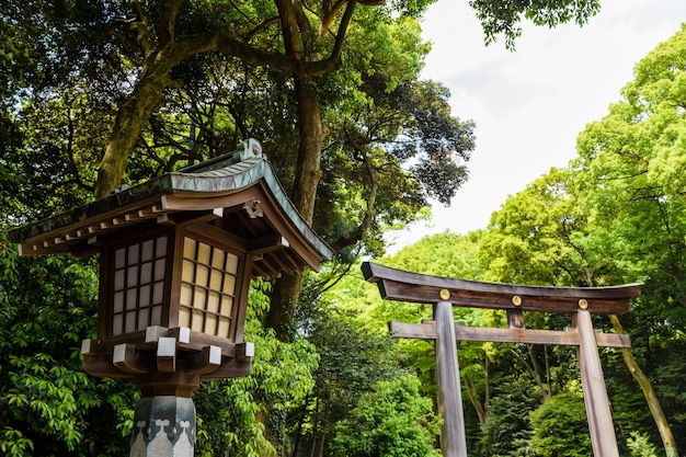 Светильник и ворота тории в храме мэйдзи дзингу, токио