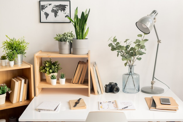 Lamp, copybooks, photocamera and books on desk, flowerpots on wooden shleves and picture map on the wall in the office