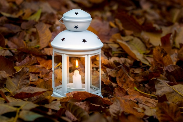 Lamp with candle on autumn leaves in the evening