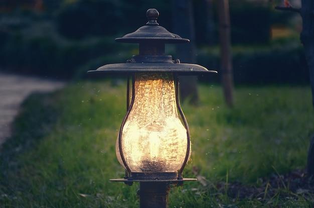 밤 정원에서 램프입니다. 공원의 장식 조명
