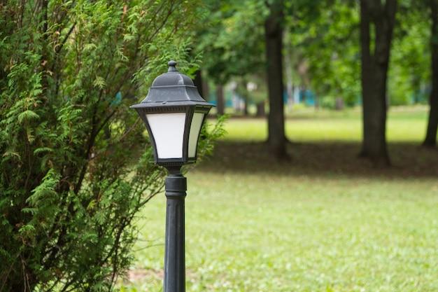 公園の木々を背景にした街灯