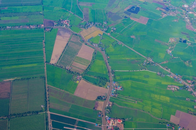 Land view from sky / aerial view of a green  background