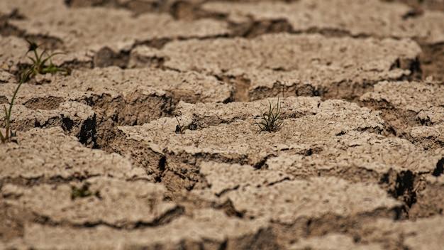 Земля с сухой потрескавшейся землей. закройте вверх.