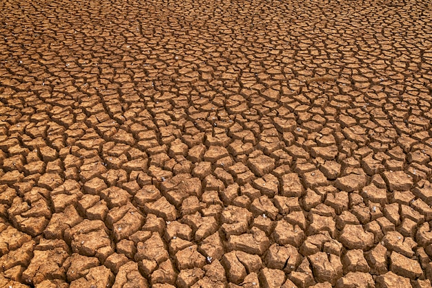 Land with dry and cracked ground. global warming background
