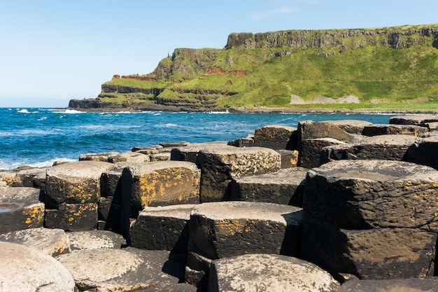 Landascapes of ireland. giant's causeway, northern ireland