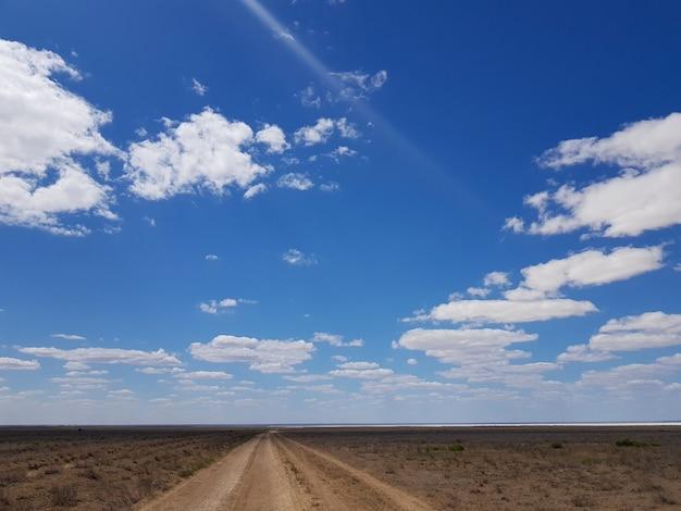 遠くに伸びる草原の道と雲のある青い空を風景します。高品質の写真