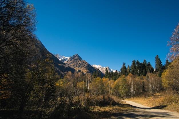 Пейзаж красивых гор с лесом и соснами и голубым небом с солнечными лучами и изюминками на кавказе в россии село домбай