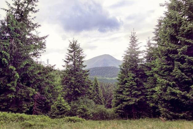 Landscape of a carpathians mountains with mountain petros