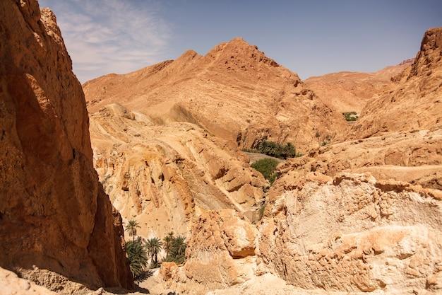 サハラ砂漠の風景チェビカオアシス。山の風景の眺め。北アフリカの風光明媚な山のオアシス。ジェベルエルネゲバの麓にあります。晴れた日の午後のアトラス山脈。トズール、チュニジア