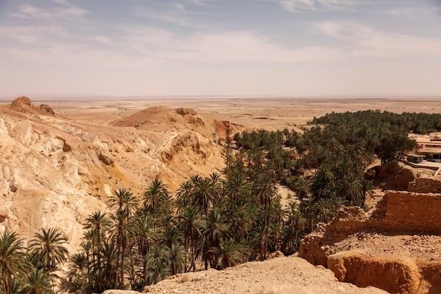 サハラ砂漠の風景チェビカオアシス。集落と手のひらを台無しにします。北アフリカの風光明媚な山のオアシス。ジェベルエルネゲバの麓にあります。晴れた日の午後のアトラス山脈。トズール、チュニジア