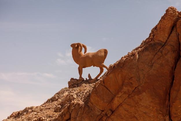 サハラ砂漠の風景チェビカオアシス。丘の上のramの彫刻。北アフリカの風光明媚な山のオアシス。ジェベルエルネゲバの麓にあります。晴れた日の午後のアトラス山脈。トズール、チュニジア