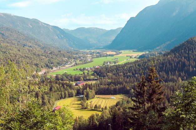 Пейзаж, состоящий из гор норвегии с елями, зеленой травяной долиной и голубым небом.